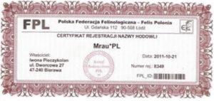 FP - certyfikat